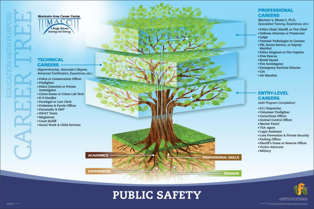 A picture of the public safety career tree showing jobs in entry level, technical, and professional areas.