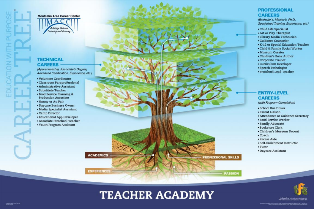A picture of the teacher academy career tree showing jobs in entry level, technical, and professional areas.
